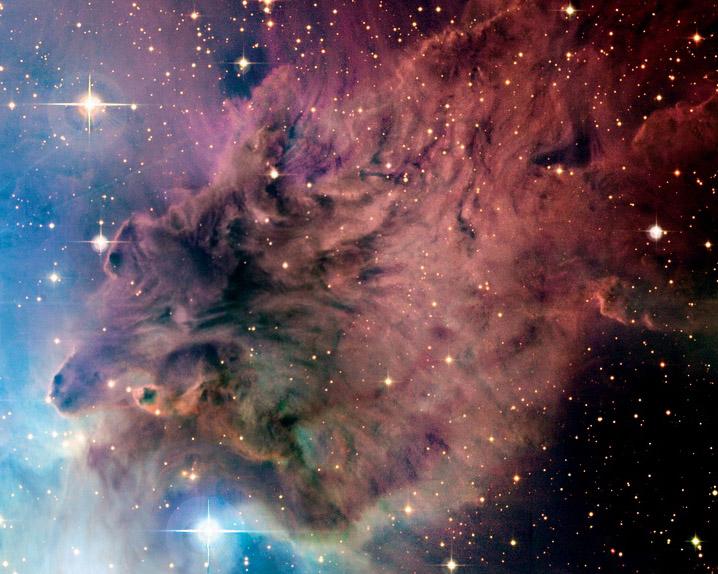La Nebulosa Piel De Zorro desde el CFHT