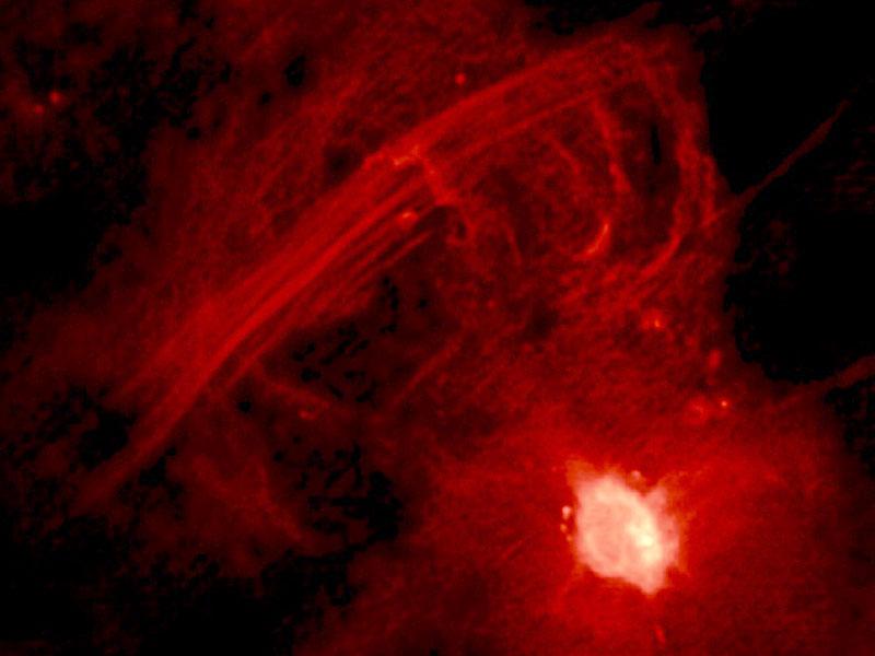 El arco de radio del centro galáctico