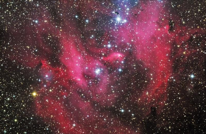 IC 2948: la nebulosa de la gallina corredora