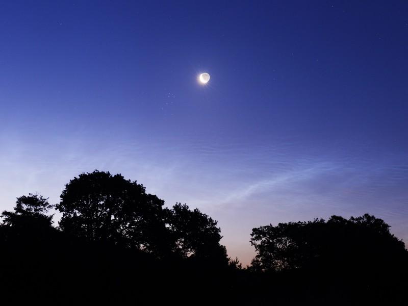 Noches relucientes