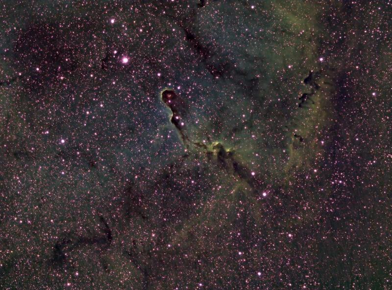 ケフェウス座の象の鼻星雲/IC1396