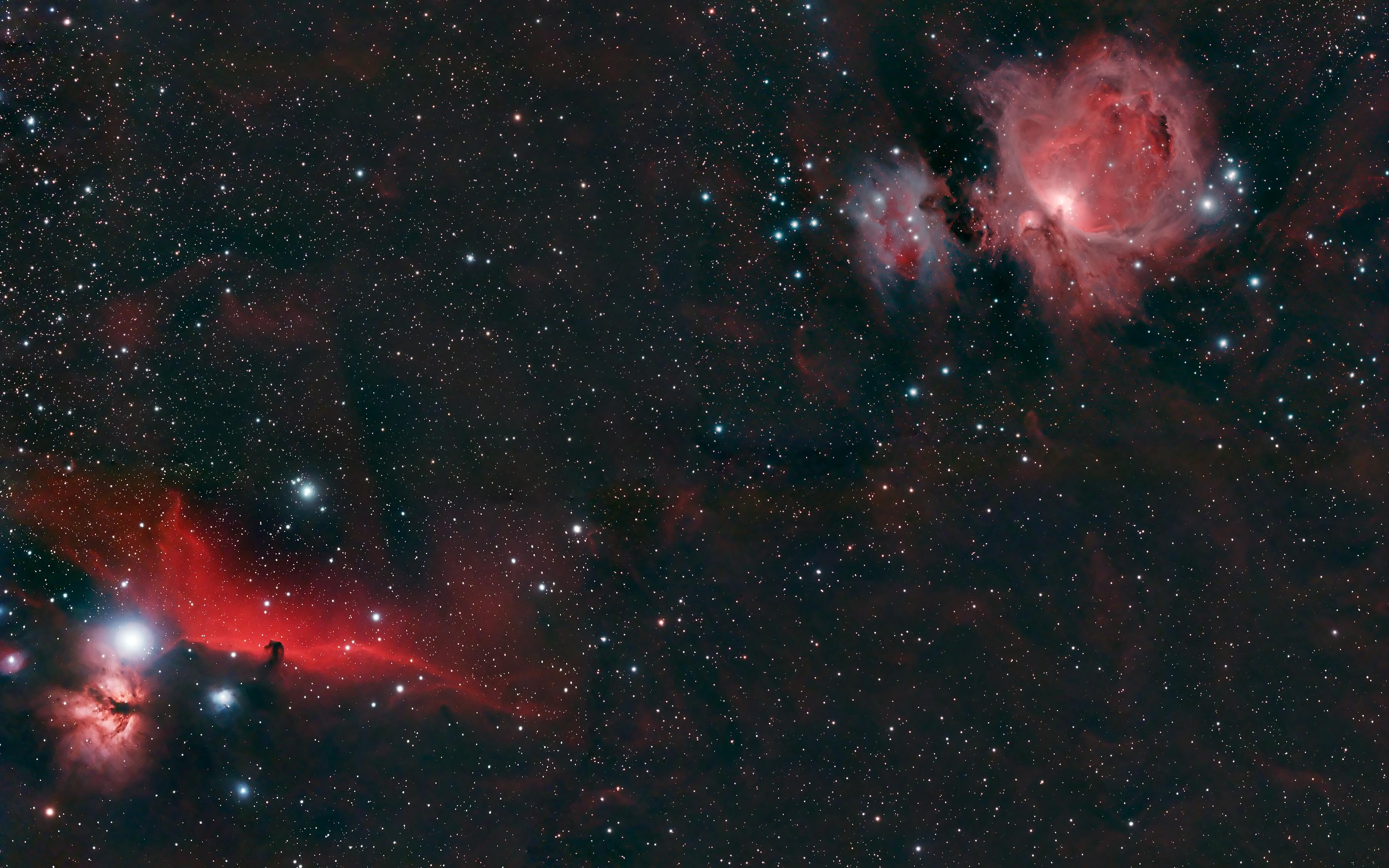 horsehead nebula in orion - photo #19