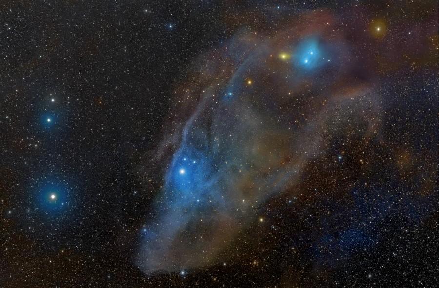 IC 4592: una cabeza de caballo en azul