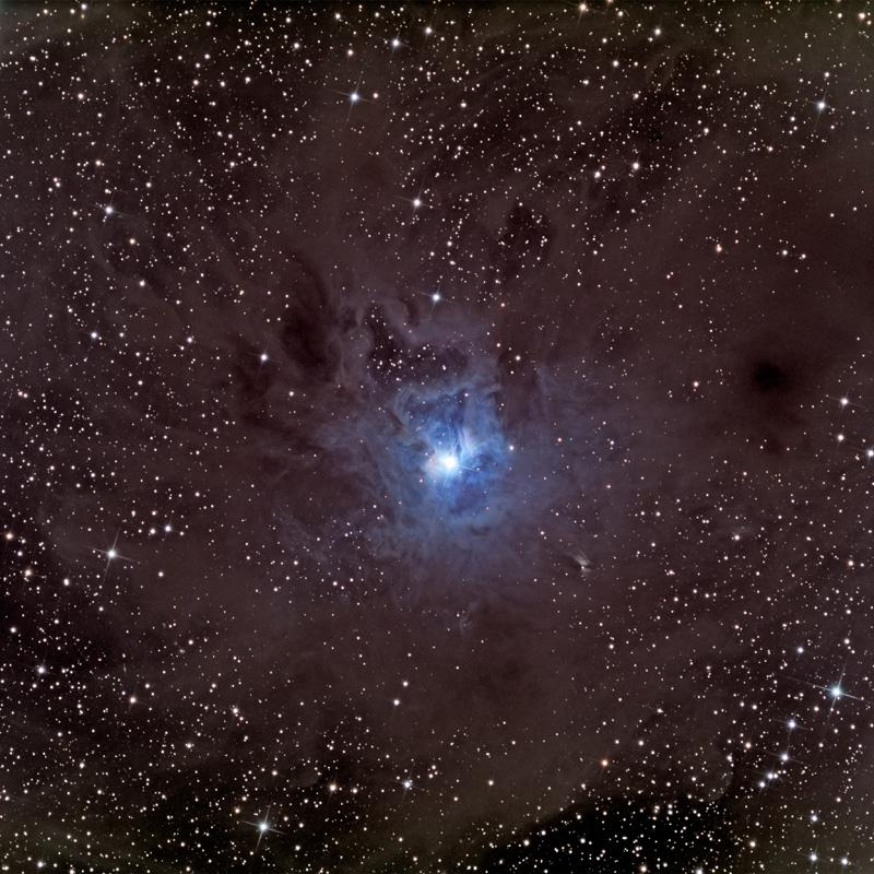 Una polvorienta Nebulosa del Lirio