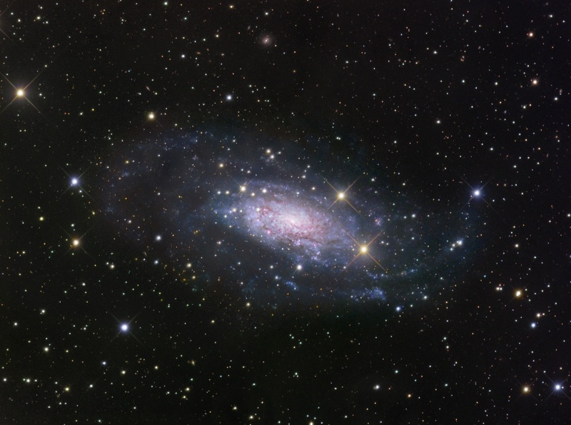 图片说明:NGC 3621,版权:Robert Gendler