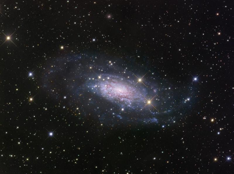 NGC3621 در دور دستهای گروه محلی