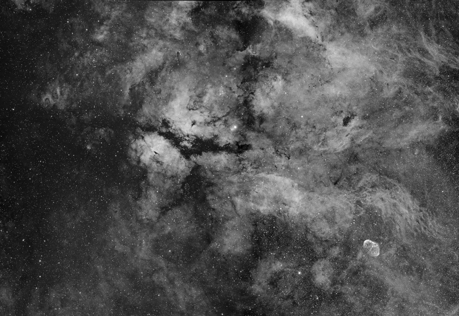 Retrato estelar en el centro del Cisne