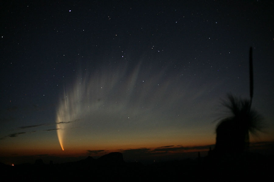 La Magnífica Cola del Cometa McNaught