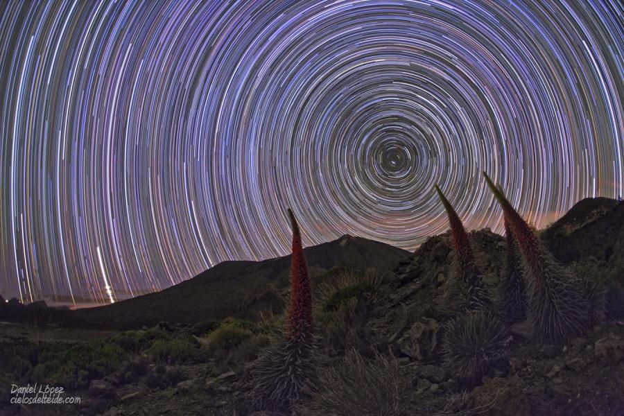 Trazas estelares y tajinastes