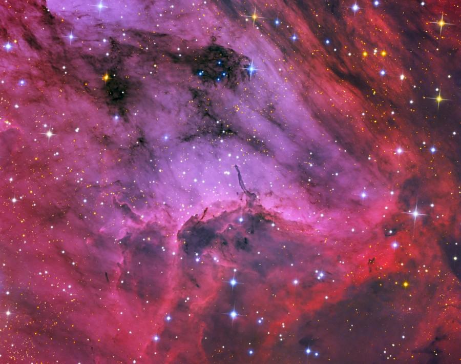 Primer Plano de la Nebulosa del Pelícano