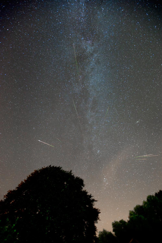 [摘译]每日天文一图 - 夜色流星(2010年8月14日) - 秋天的麦兜 - 蜗牛壳