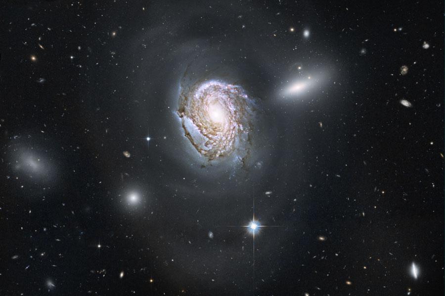 NGC 4911: Espiral cayendo en el denso cúmulo