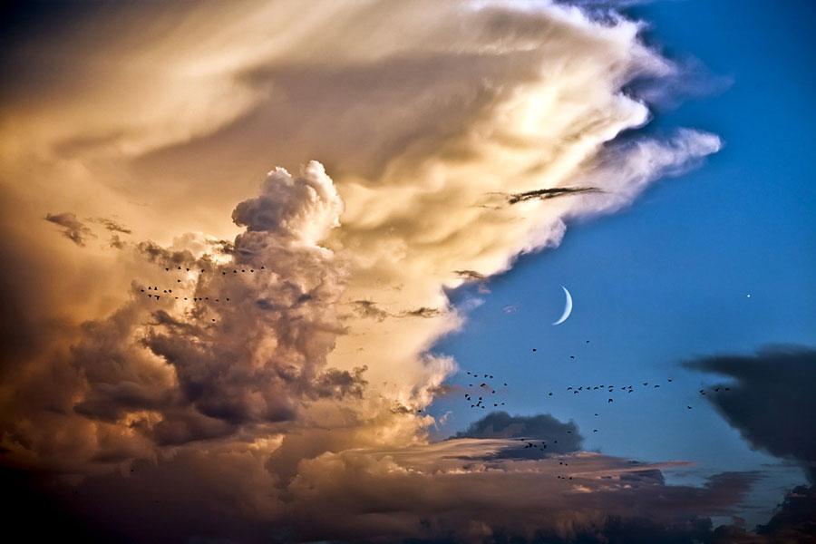 [摘译]每日天文一图 - 金星伴月月如钩(2010年9月15日) - 秋天的麦兜 - 蜗牛壳