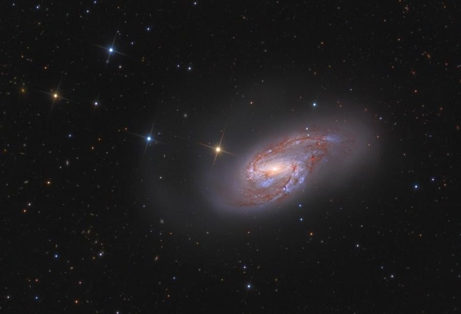 Spirální galaxie M66