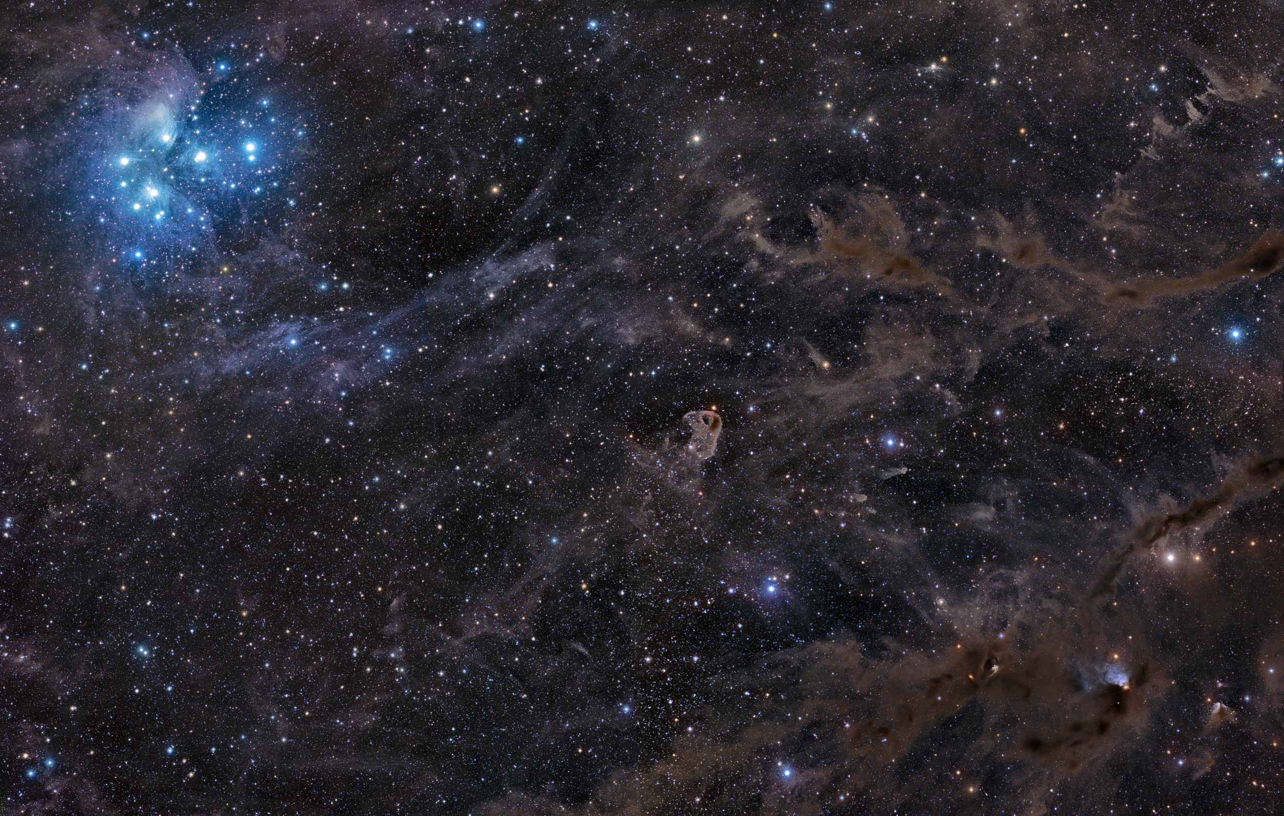 APOD: 2010 November 18 - Sisters of the Dusty Sky