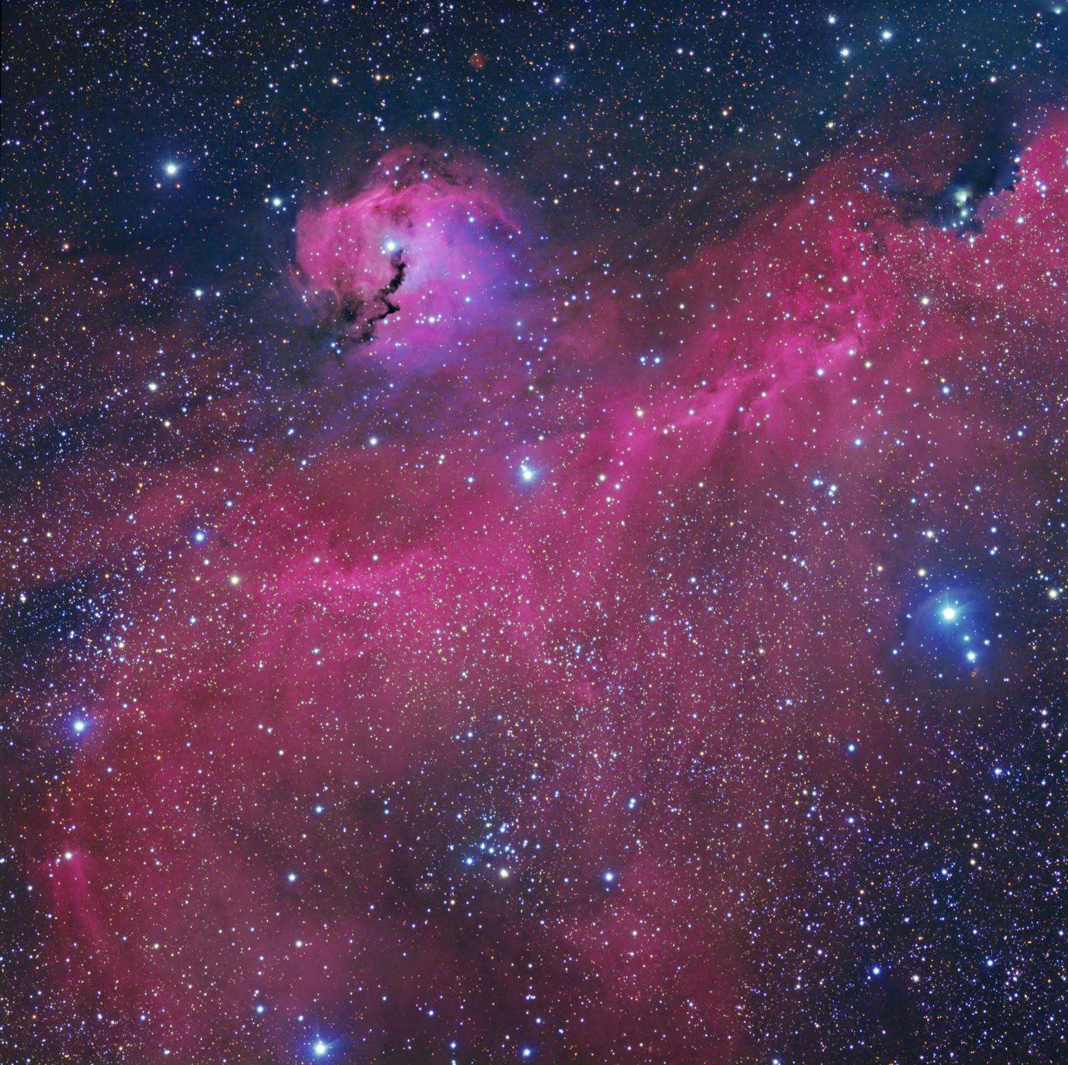 Telescopio detecta Gaviota Cosmica.
