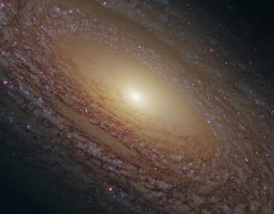 Detalle de la Galaxia Espiral NGC 2841