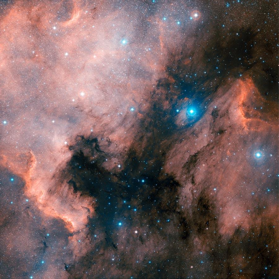 [摘译]每日天文一图 - 北美星云的红外图像(2011年2月15日) - 秋天的麦兜 - 蜗牛壳