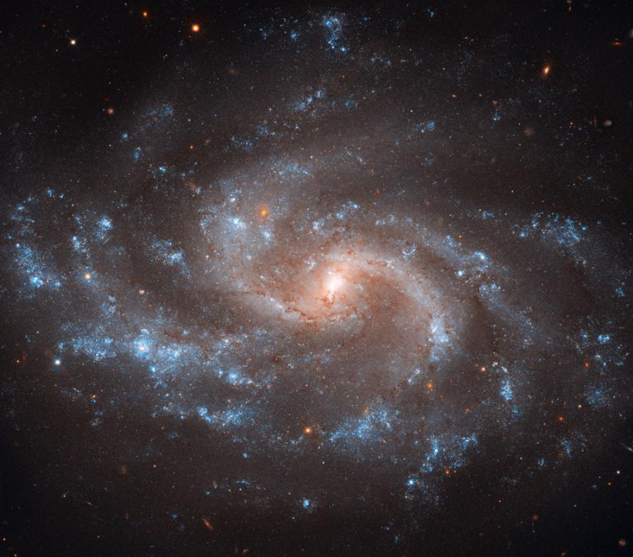 NGC 5584: Expandiendo el Universo