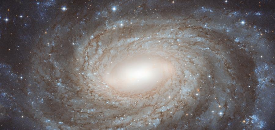 NGC 6384: Espiral más allá de las estrellas