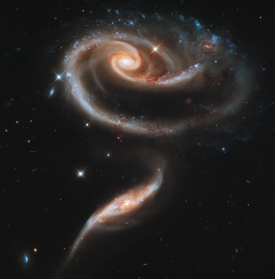 Peculiar Galaxies of Arp 273