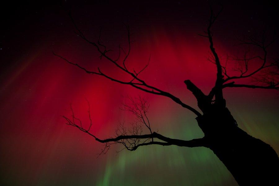 Luces del cielo de Octubre