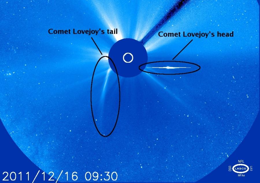 El cometa Lovejoy roza el Sol pero sobrevive