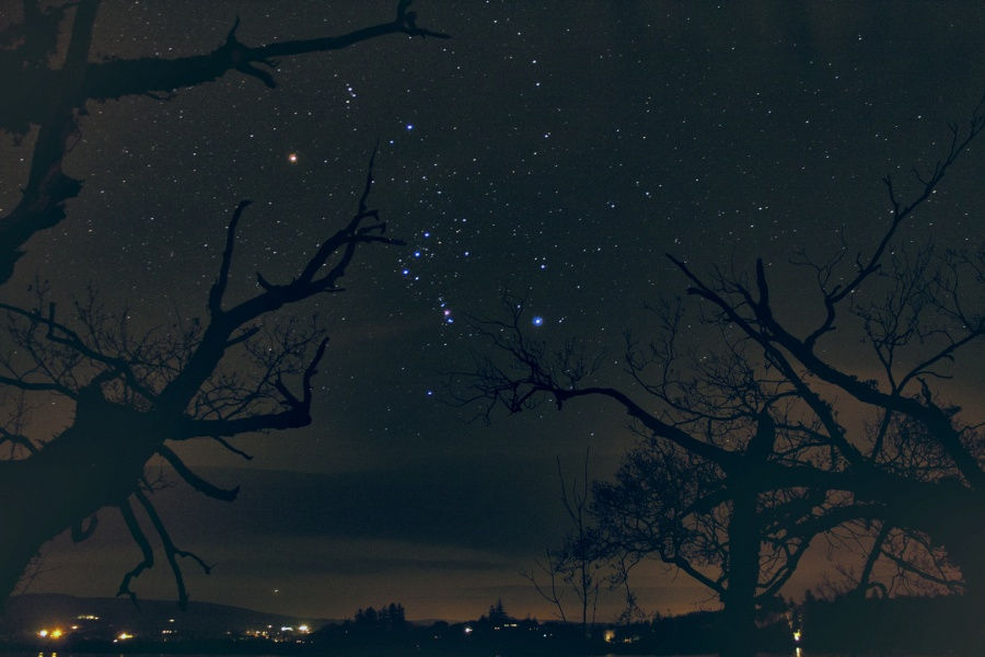 Las estrellas del cazador