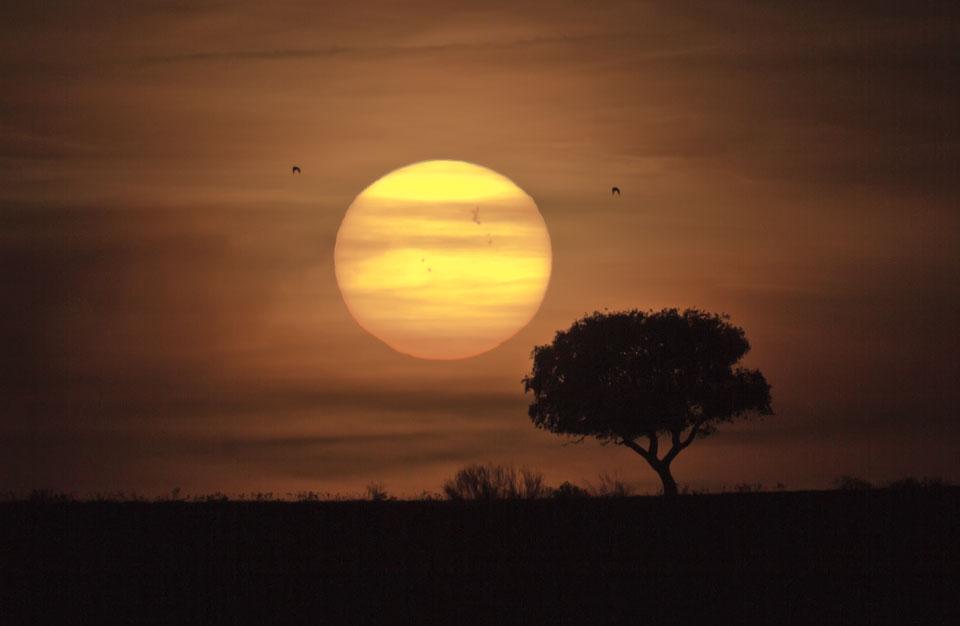 Skupina slunečních skvrn 1429 a vzdálené slunce