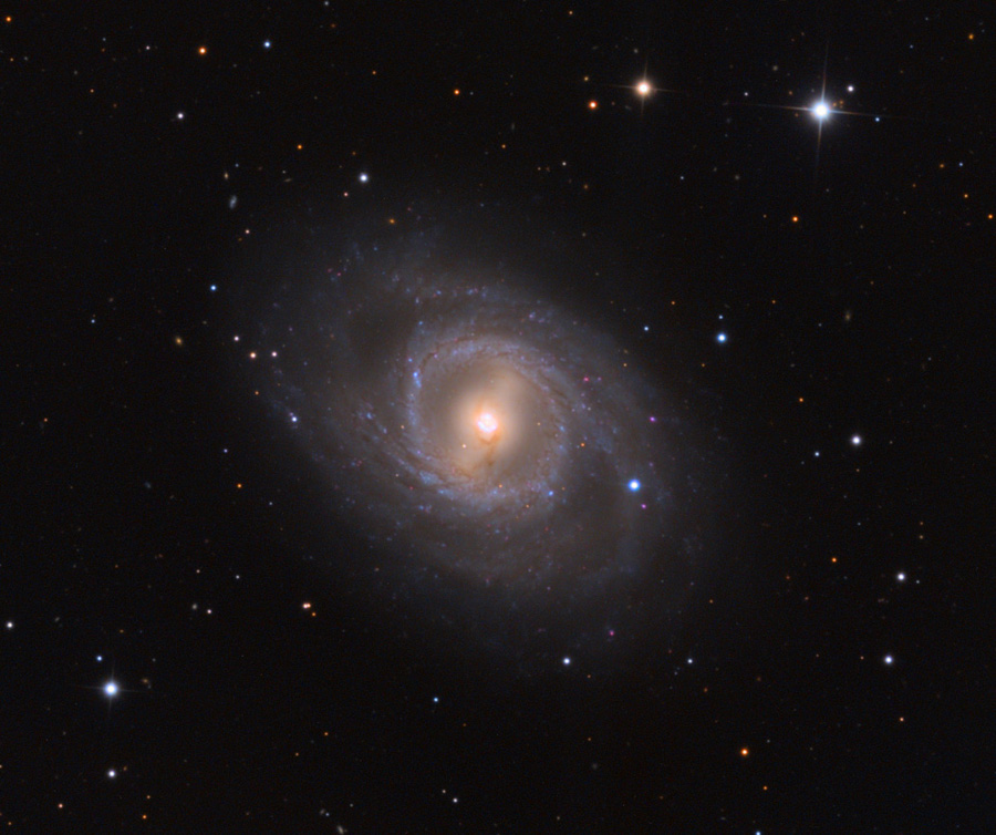 M95 con supernova