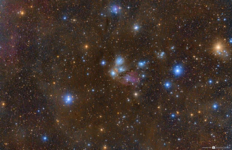 NGC 2170: naturaleza muerta celeste