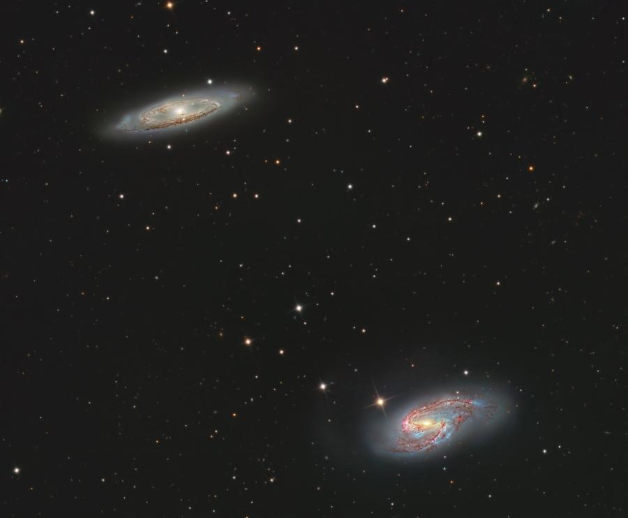 M65 a M66