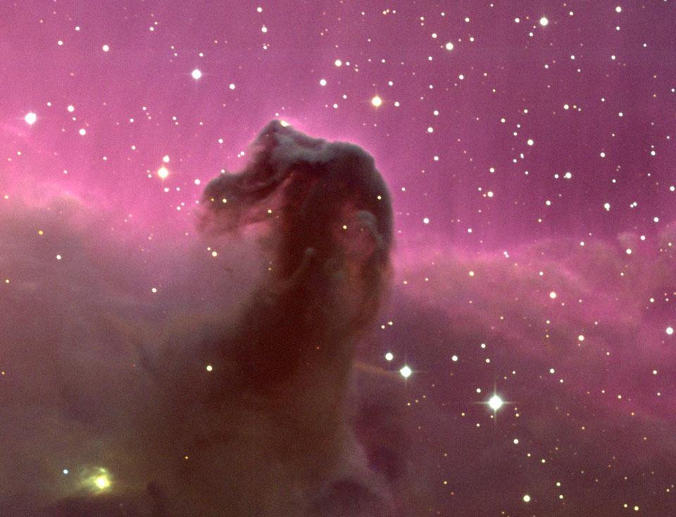 La nebulosa de la Cabeza de Caballo