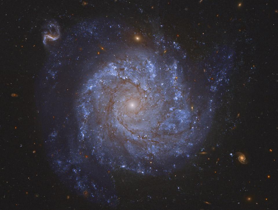 NGC 1309: Galaxia espiral y amigas
