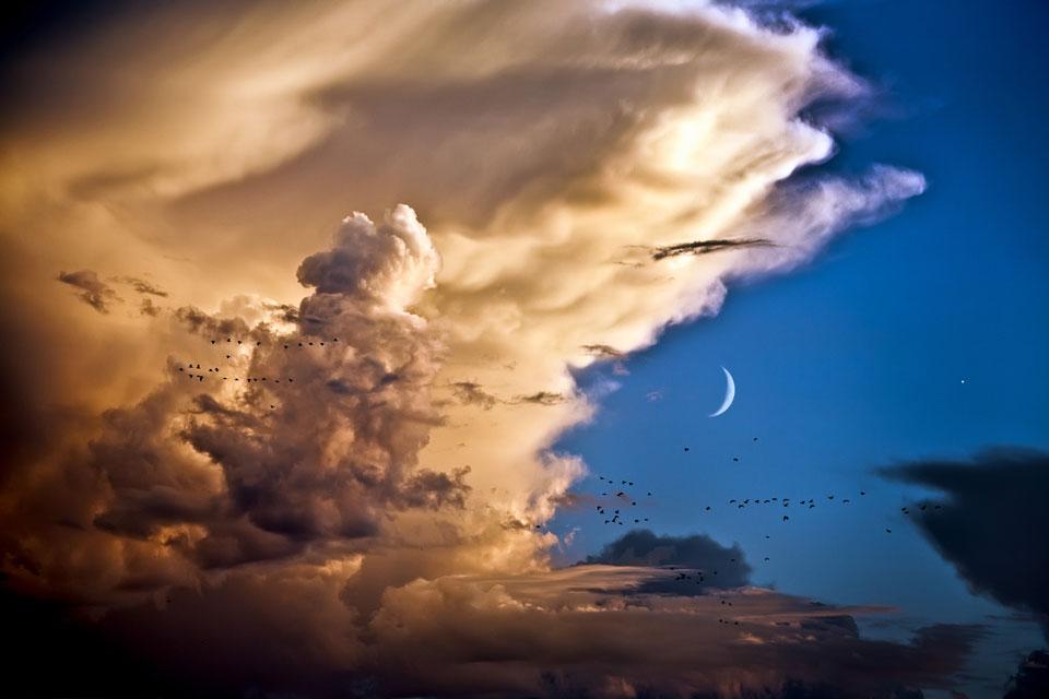 Nubes, pájaros, Luna, Venus