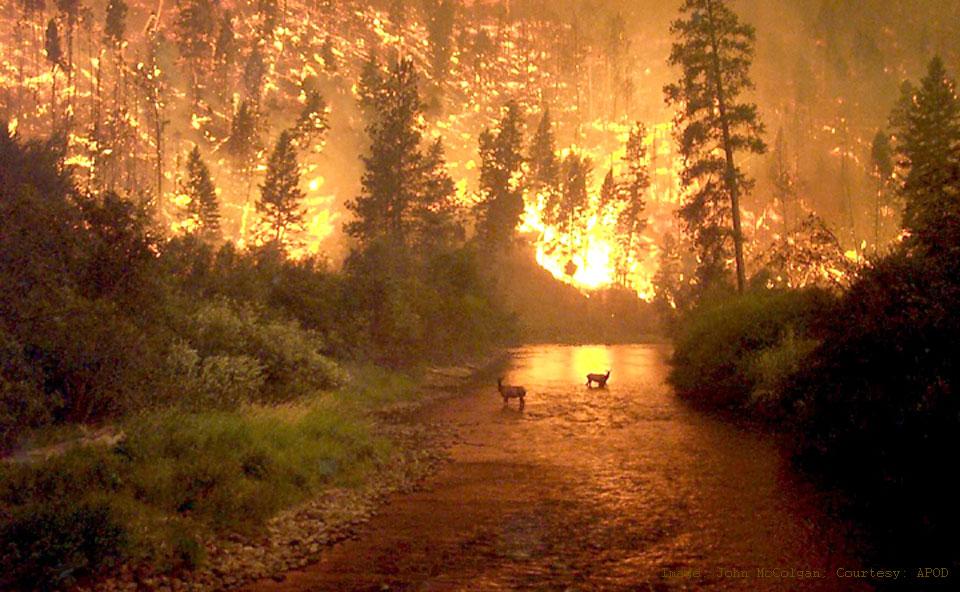 Oheň na Zemi