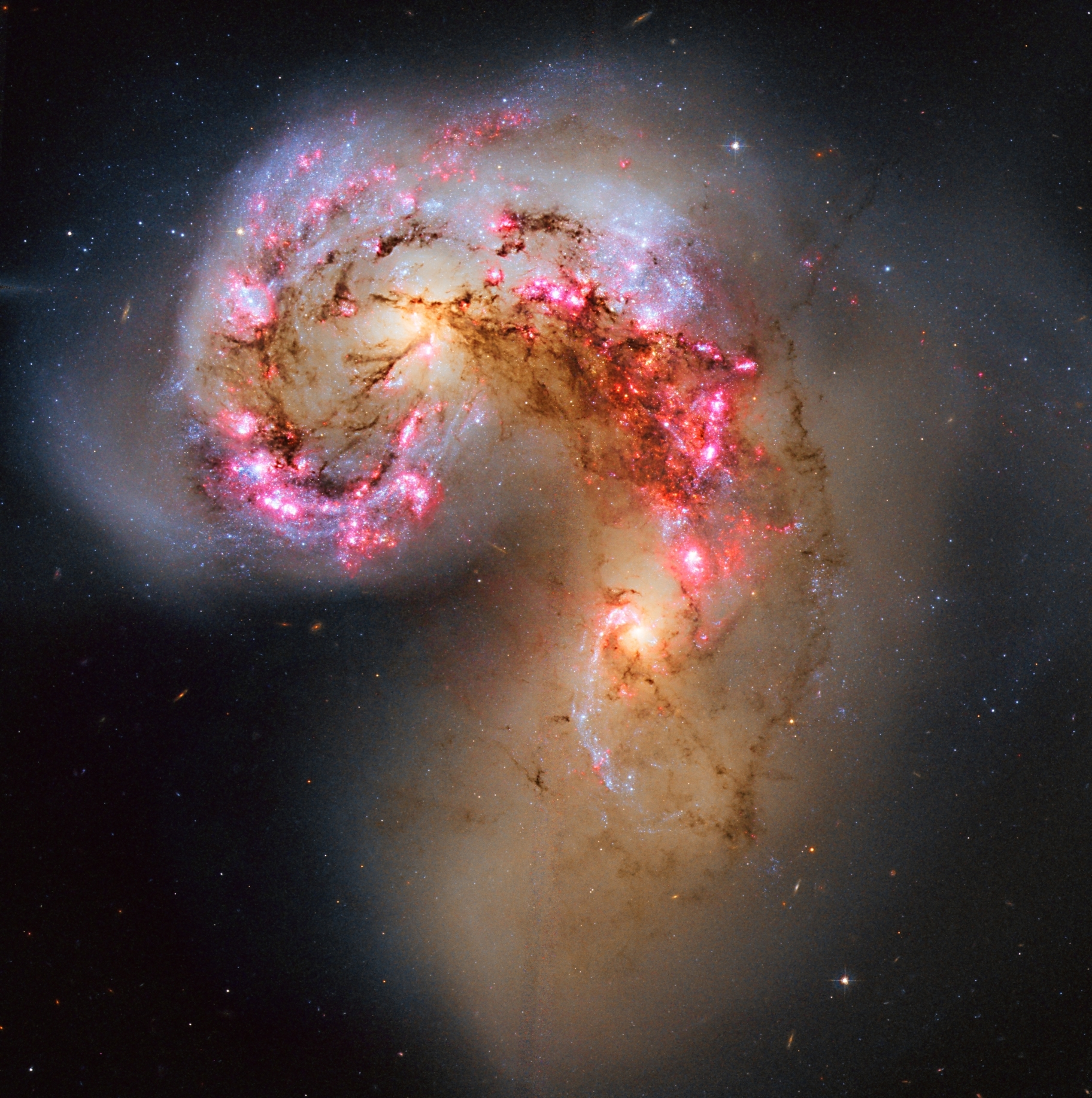 apod 2014 march 16 the antennae galaxies in collision