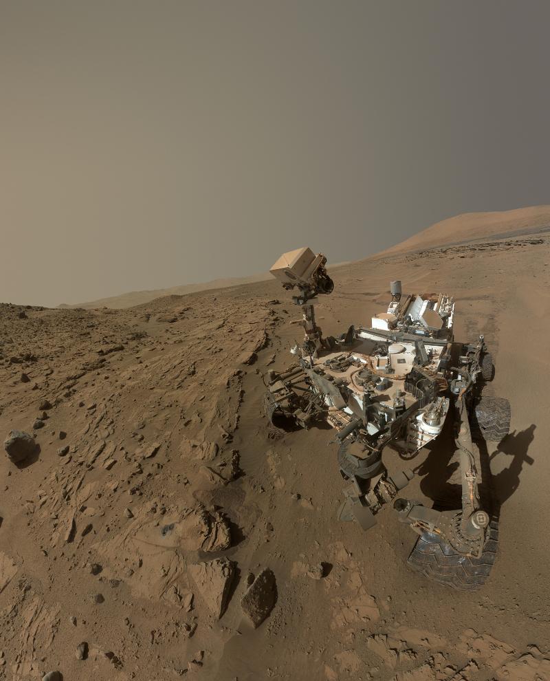 Selfie de aniversario marciano