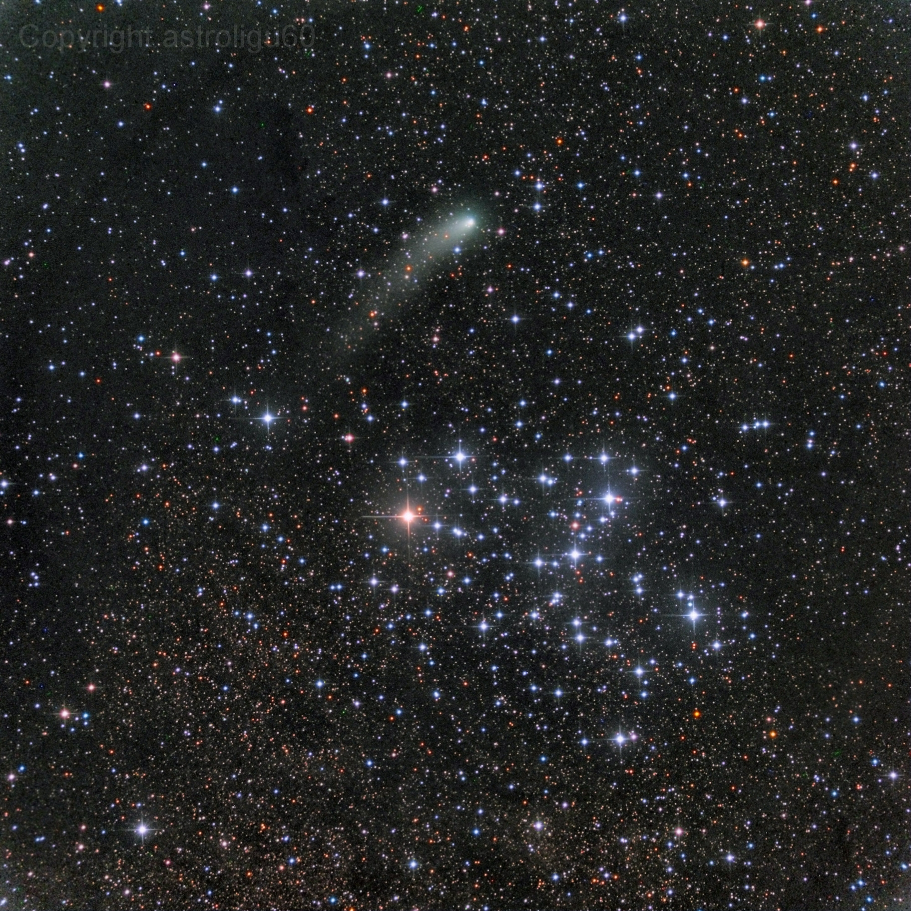 Apod 2014 October 17 Messier 6 And Comet Siding Spring