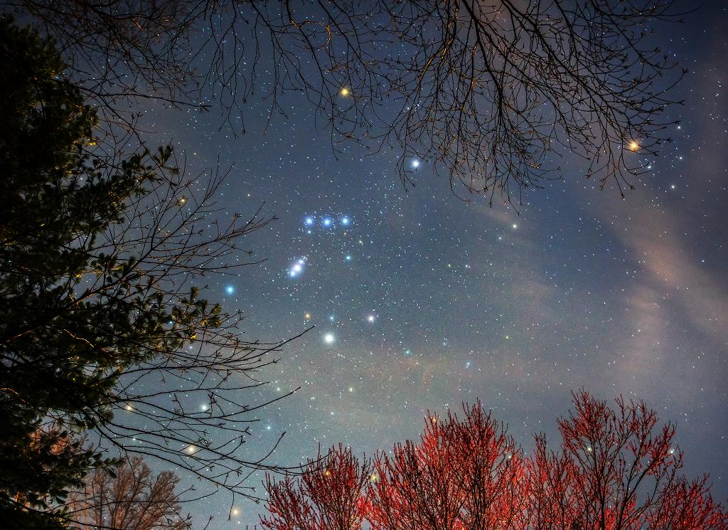 Orion primaveral