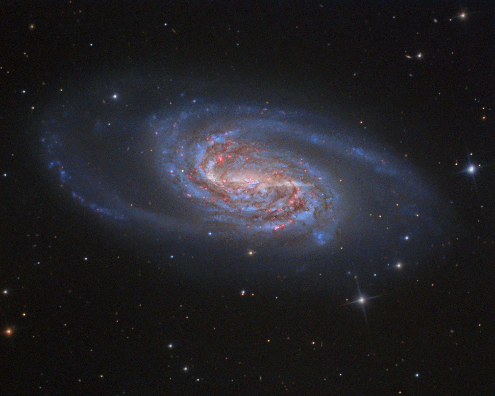 2015 April 10 - NGC 2903: A Missing Jewel in Leo