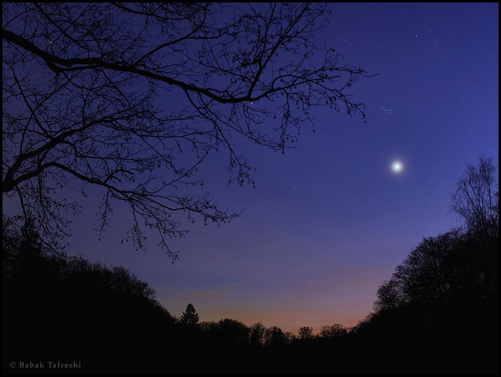 Venus en el oeste