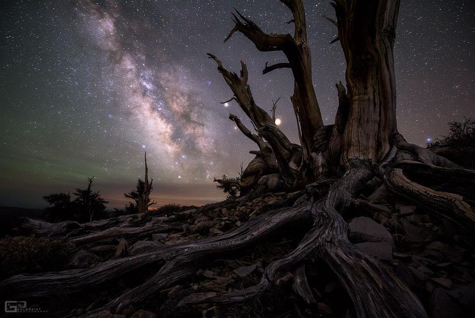 Planetas y galaxia más allá de los pinos de Bristlecone
