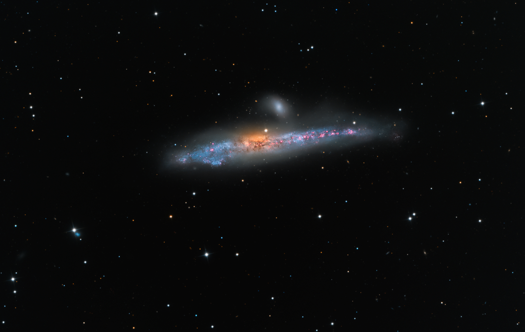 2016 June 3 - NGC 4631: The Whale Galaxy