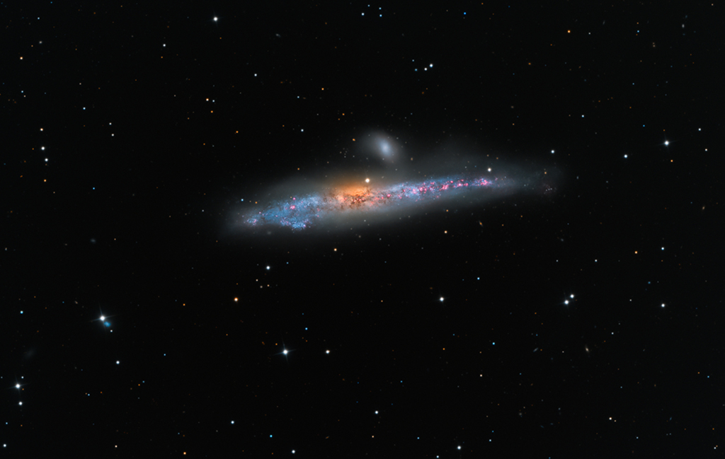 NGC 4631: Galaxie Velryba