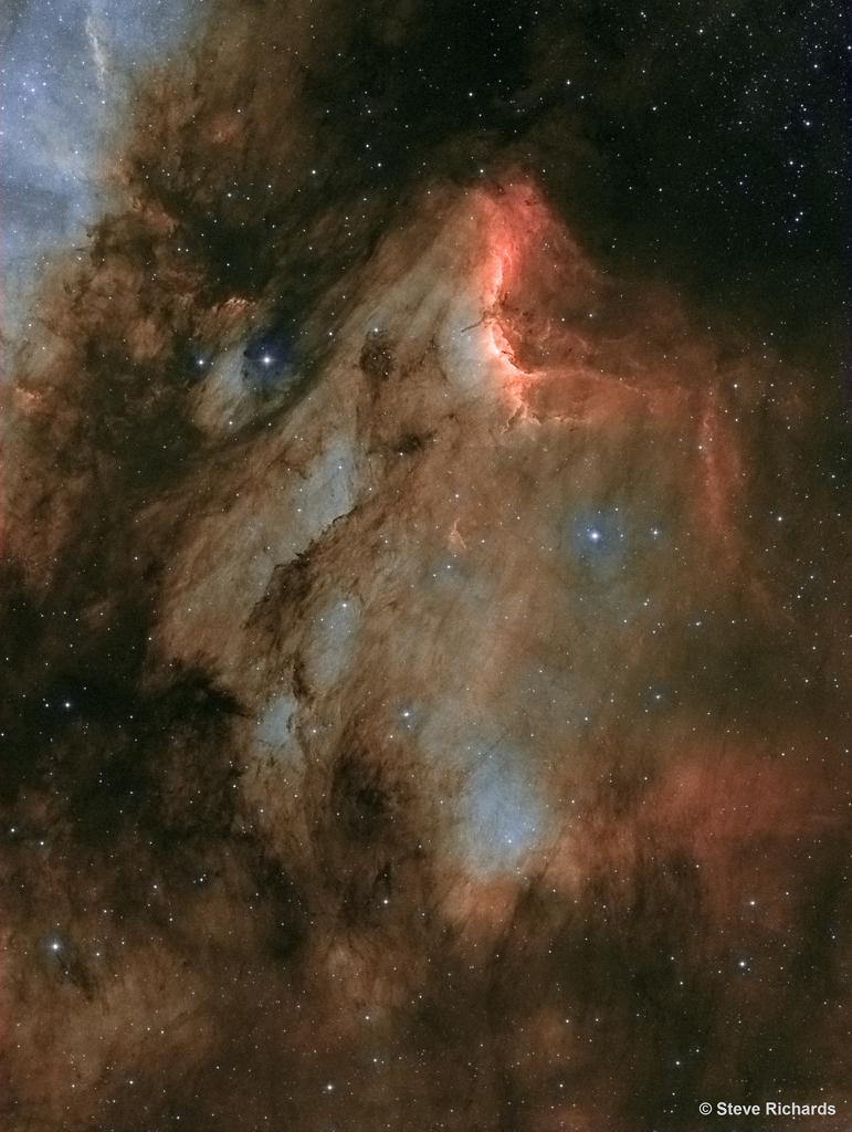 IC 5070: Un polvoriento pelícano en el cisne
