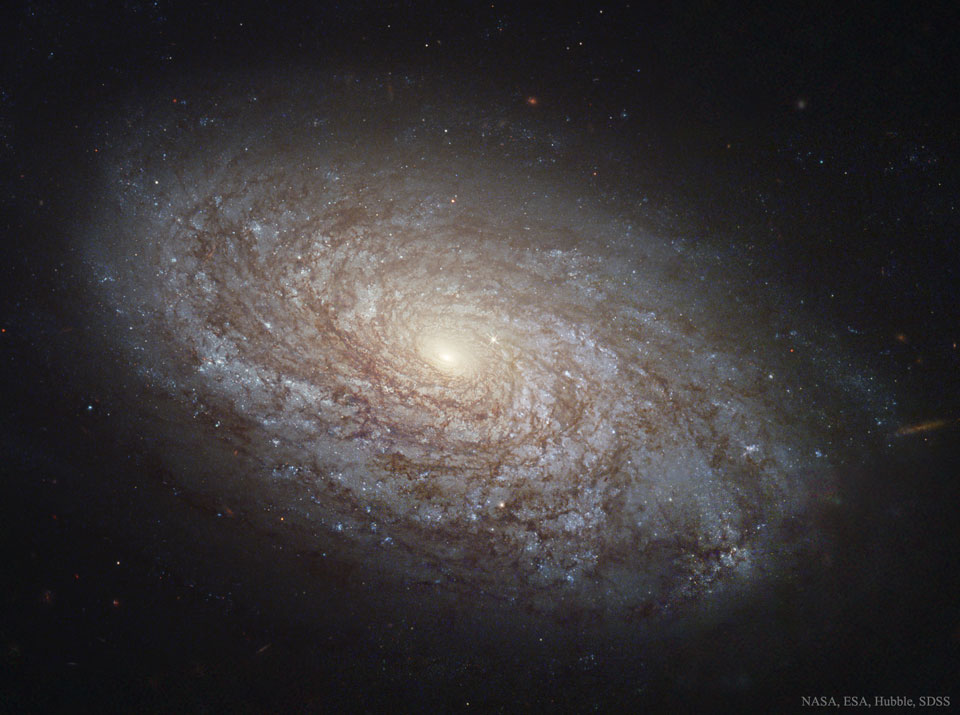 NGC 4414: Una Galaxia espiral floculante