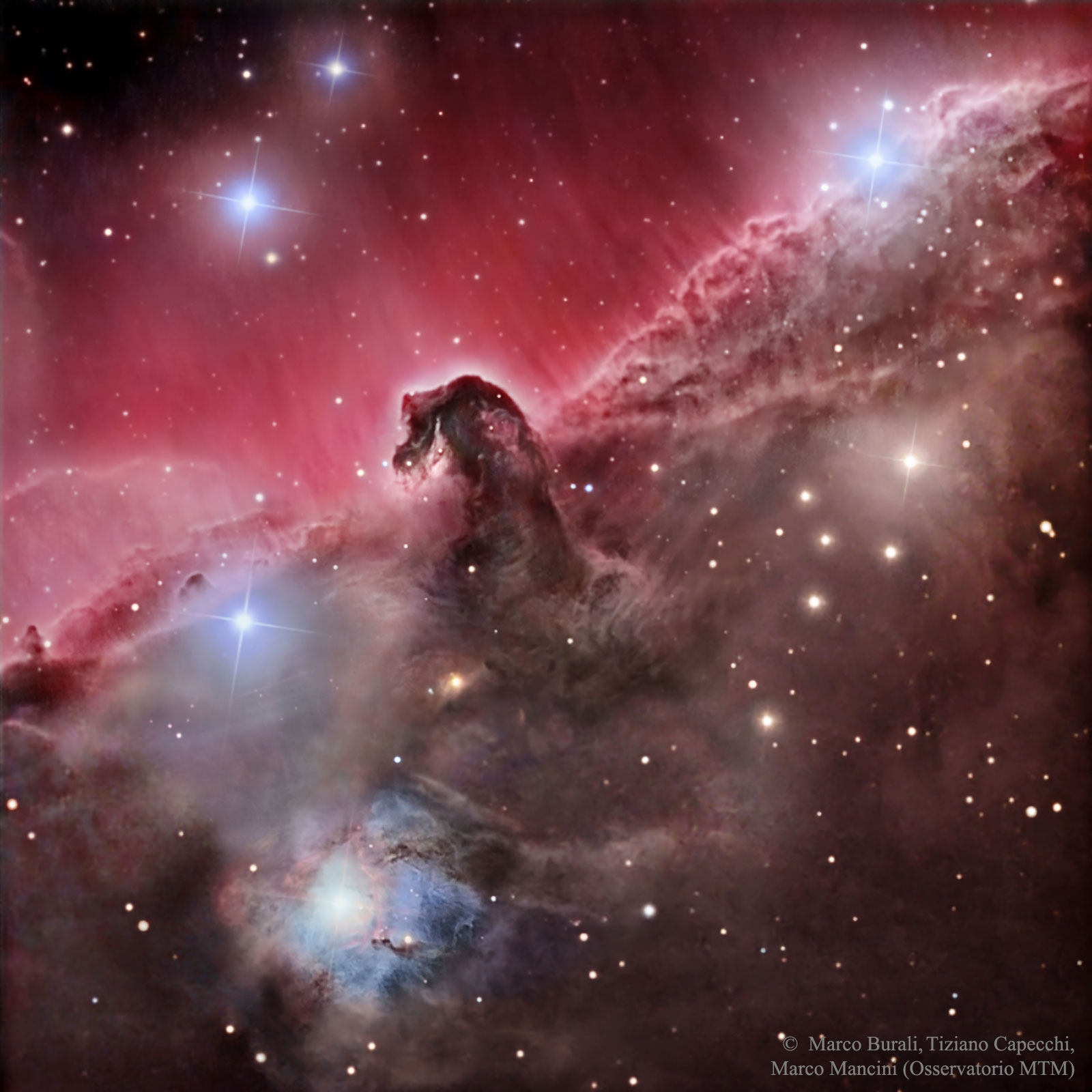 The horsehead nebula, a magnificent interstellar dust cloud in the constellation Orion.