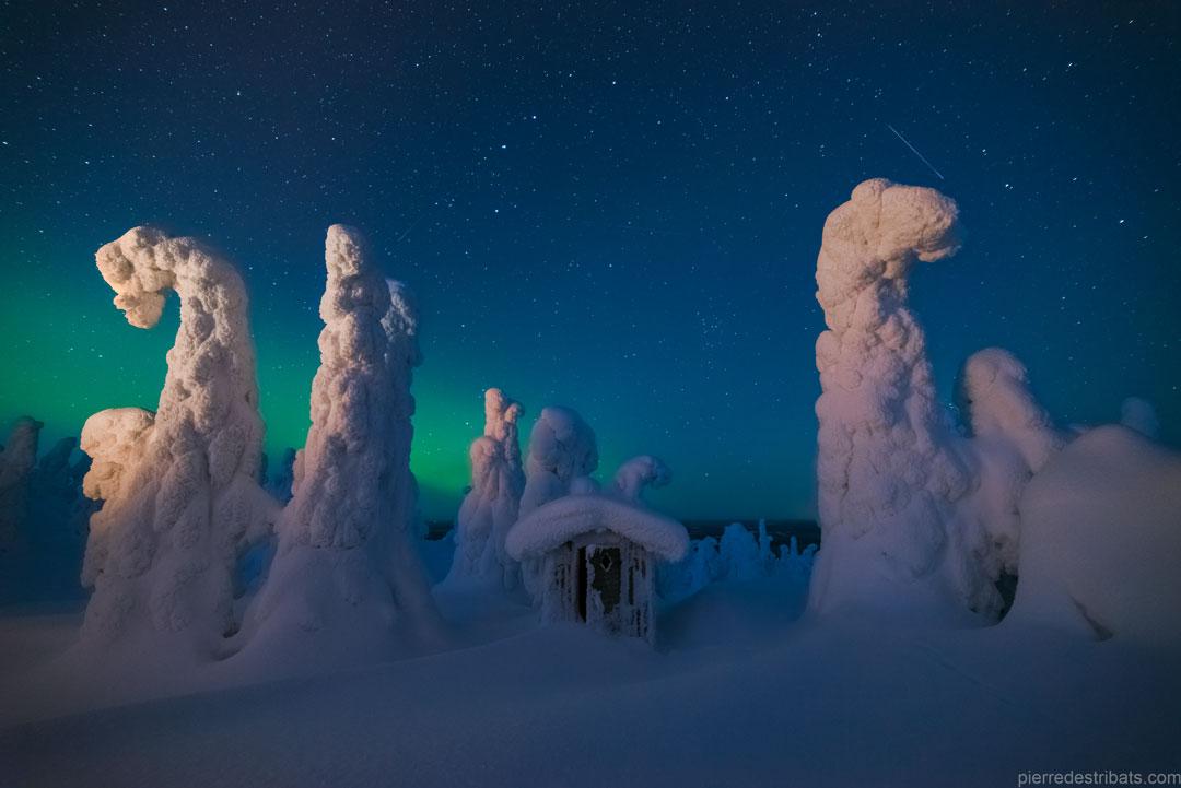 Centinelas de un cielo del norte