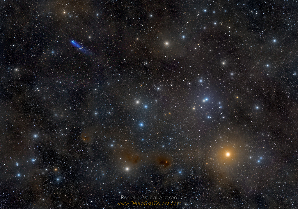 Blue Comet in the Hyades